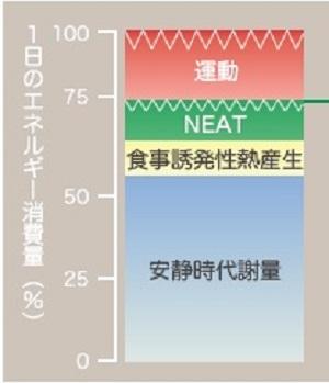 https://www.e-healthnet.mhlw.go.jp/information/exercise/s-02-003.html